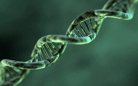 Study suggests bipolar disorder has genetic links to autism
