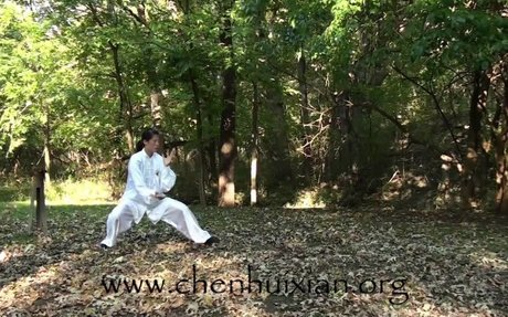 Video of Chen Tai Chi's 18-Form Beginner's Routine