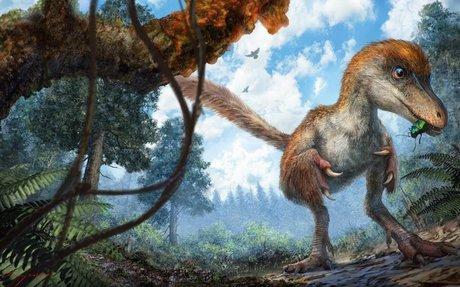 Nat Geo - Dinosaur Extinction Information and Facts
