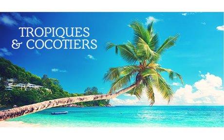30 Best Playa Flamingo Hotels, Costa Rica (From $91)