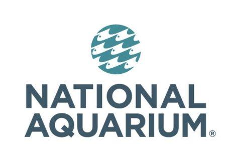 National Aquarium - Baltimore, MD