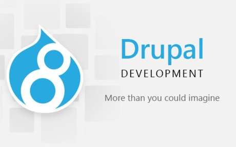 Why Choose Drupal for Business Application Development