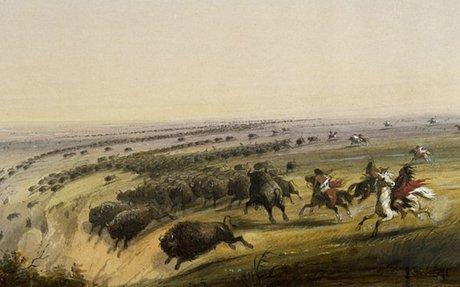 Sioux-Lakota Adaptation