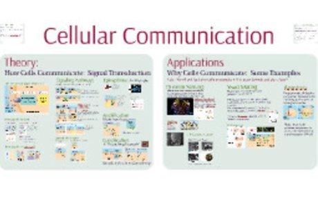 AP Bio- Communication 1: Cellular Communication