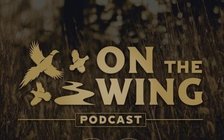 Ep. 25 Quail Forever on the Rise in the Southeast