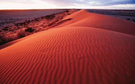 Simpson Desert Conservation Park and Regional Reserve