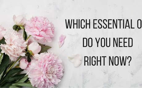 Which Essential Oil Do You Need Right Now? - Take the Quiz