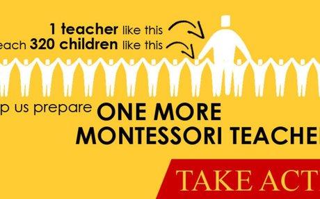 Pan American Montessori Society | Montessori Certification