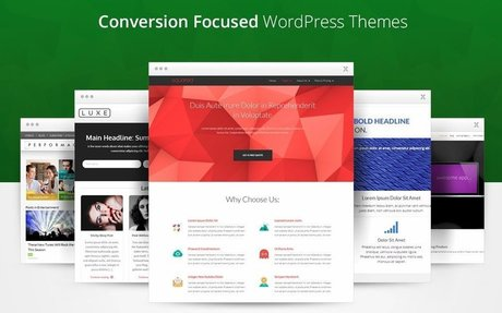 Thrive Themes - Conversion Focused WordPress Themes & Plugins