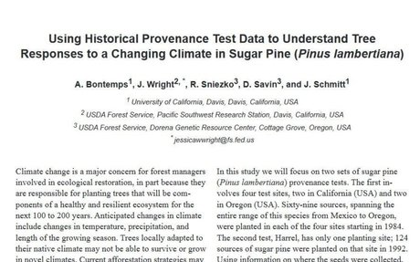Using historical provenance test data to understand tree responses to a changing climate
