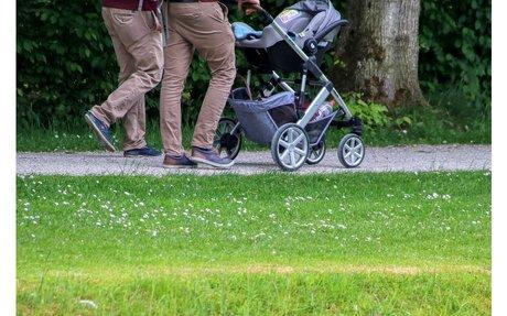 Elterngeld und Elternzeit in Schweden – Wikipedia