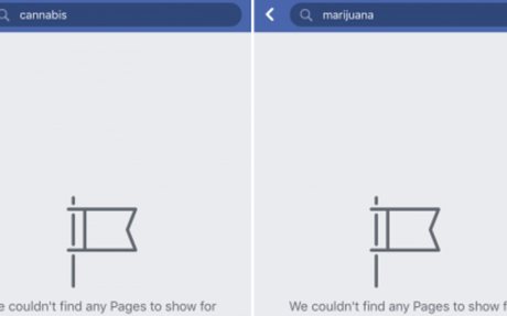 Facebook And Instagram's Anti-Weed Stance Frustrates Cannabis Entrepreneurs
