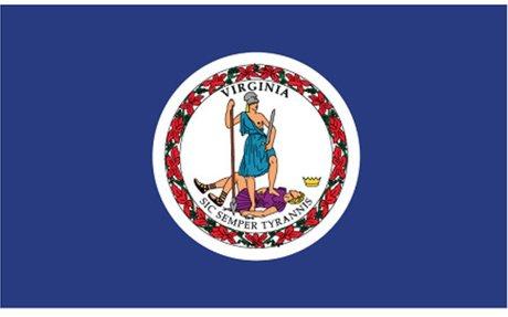 Virginia Land Surveyors (VAS)
