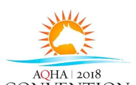 AQHA: AQHA Convention Committee Agendas