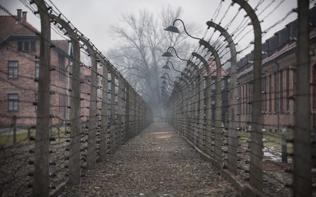 holocaust thank you letter