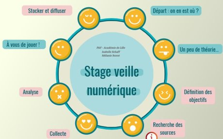 Stage veille 2018 by mserret.doc on Genial.ly