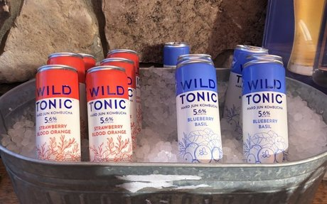 Wild Tonic debuts canned hard kombucha at Birds of Prey