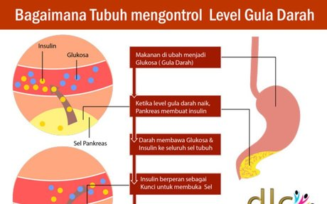 Obat Diabetes Herbal mengobati tuntas - Obat Herbal Alami Optimate