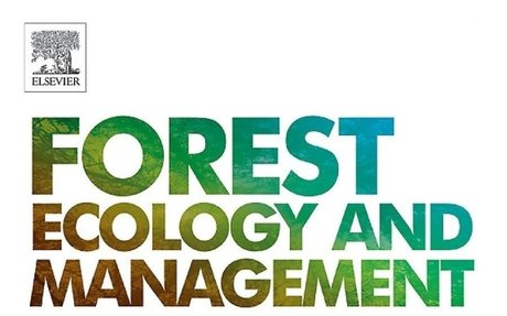 Shifts in forest composition in the eastern United States