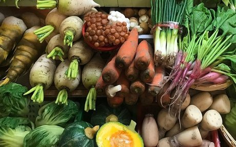 Vegetarians, vegans have higher stroke risk than meat eaters, study claims