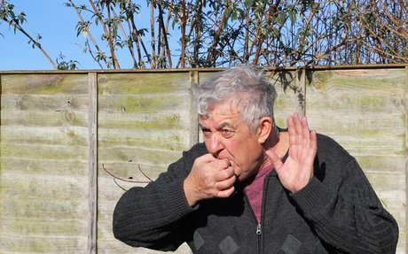 What This Rare Whistling Language Tells Us About the Brain