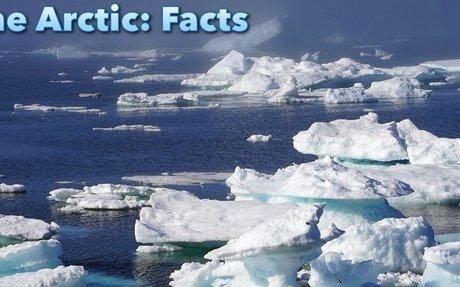 Arctic Ecosystem