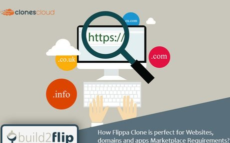 How Flippa Clone Is Perfect For Websites, Domains And Apps Marketplace Requirements?