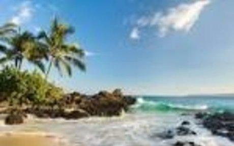 beach - Google Search