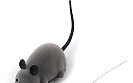 Amazon.com : Rat Toy for Cat, Patgoal RC Funny Wireless Electronic Remote Control Mouse Ra