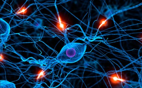 #2. Ten Facts about Teen Mindfulness and Neuroplasticity