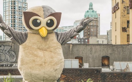10 Hootsuite Hacks You Probably Didn't Know About #PersonalBrand