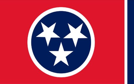 Tennessee Land Surveyors (TAPS)