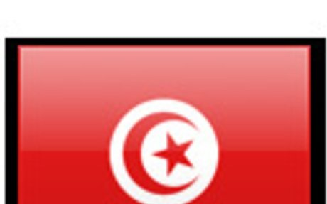 Tunisia Surveyors