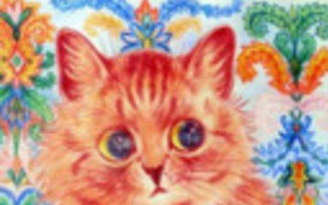 Majdnem híres macskák / Almost famous cats