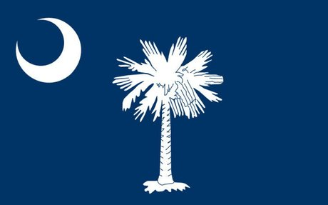 South Carolina Land Surveyors (SCSPLS)