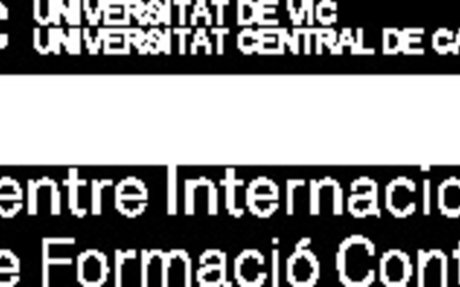 Creativitat i Pensament Visual en l'Educació   Universitat de Vic   Barcelona