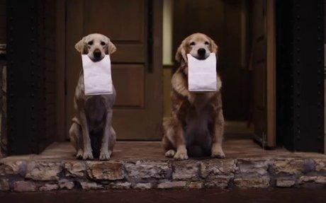 Subaru Dog Tested | Subaru Commercial | Doggie Bag - YouTube