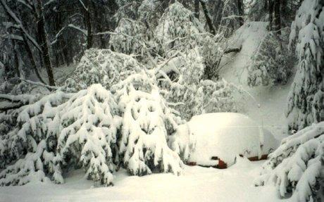 CommonLit   Blizzard