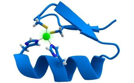 Everyday Human Protein Found To Boost Aggressive Leukemia