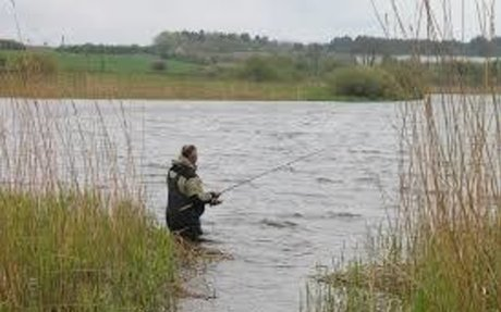 9 Reasons You Need More Fishing in Your Life