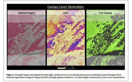 Beyond MRV: high-resolution forest carbon modeling for climate mitigation planning over US