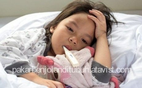 Cara Mengobati Demam Berdarah Pada Anak Secara Alami