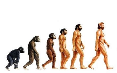 How long is evolution