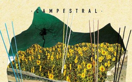 'Campestral' – Her Little Donkey