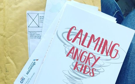 Calming Angry Kids: Help and Hope for Parents in the Whirlwind: Tricia Goyer: 978143471100