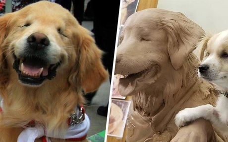 The Legacy of Smiley The Blind Therapy Dog Lives On