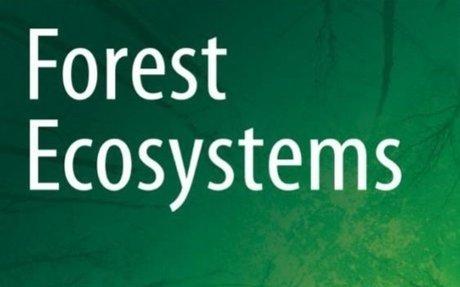 Positive association between forest management, environmental change, and bird abundance
