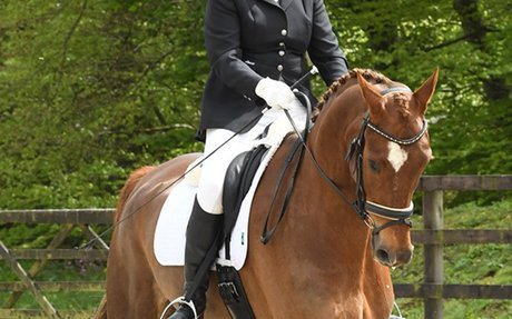 Dressage: New British Dressage rules for 2018: whips, judges and numbers - Horse & Hound