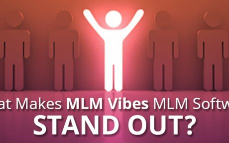 Here is What Makes MLM Vibes MLM Software Stand Out