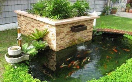 Thiết kế, thi công hồ cá koi mini trong nhà, ngoài trời, sân thượng